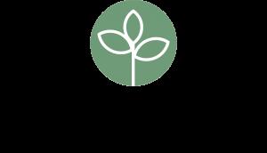 Juniper Tree Therapy Logo 2021